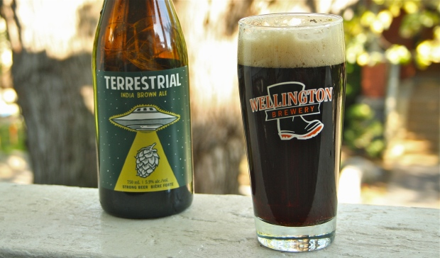 Wellington Terrestrial Brown Ale